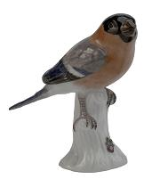 Meissen Porcelain Bird Figurine - Bullfinch