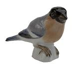 Meissen Porcelain Bird Figurine - Bullfinch I